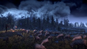The Witcher 3: Wild Hunt - Hunt Sheep