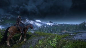 The Witcher 3: Wild Hunt - Horse