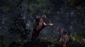The Witcher 3: Wild Hunt - Horse Ride