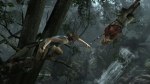 Tomb Raider: Bow