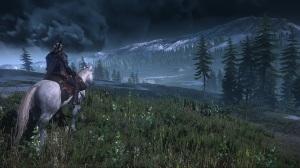 The Witcher 3: Wild Hunt - Wild Hunt Horse